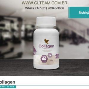 Colágeno Hidrolisado +Vit C